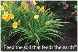feed-soil-fees-earth
